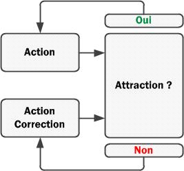 schema-attraction